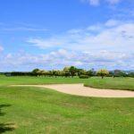 【スポーツと会社経営】会社経営にゴルフは関係あるのか