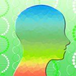 【顔の向きだけで相手を信用させる】脳の方向と顔の関係を知ることで信用されやすくする