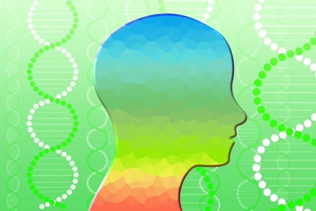 脳の動きと会社経営